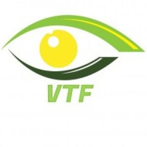 Profile photo of vtfdrones2020